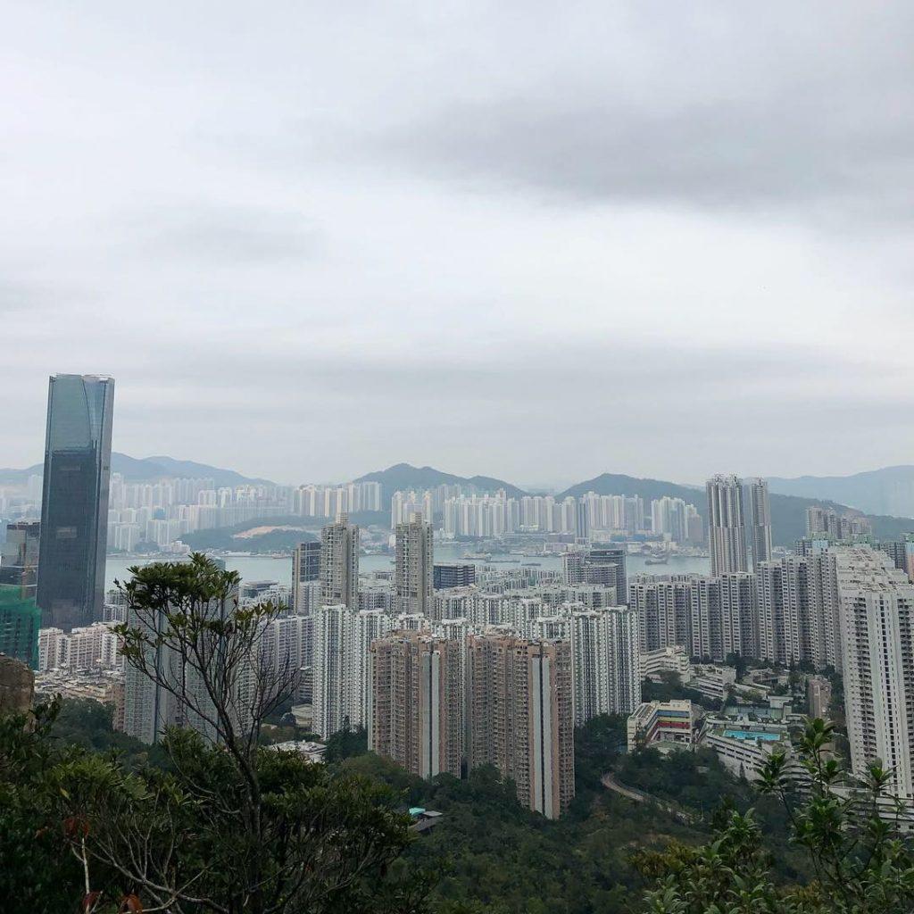 הנוף מהשביל. צילום: עינב דורון
