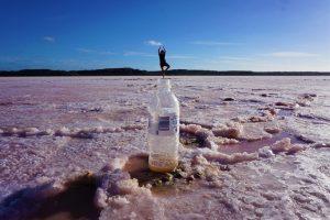אגם ורוד ומיני מדברית מלח. צילום: לנה גדשביץ׳