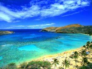 המפרץ Hanauma - שונית האלמוגים היפה בהוואי