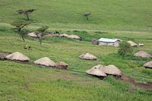 בקתות של שבט המסאי. צילום: שחק מינץ